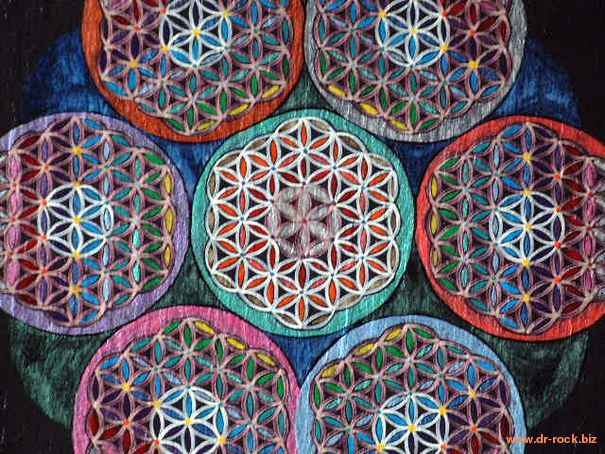 flower of lifex6 25x31 2